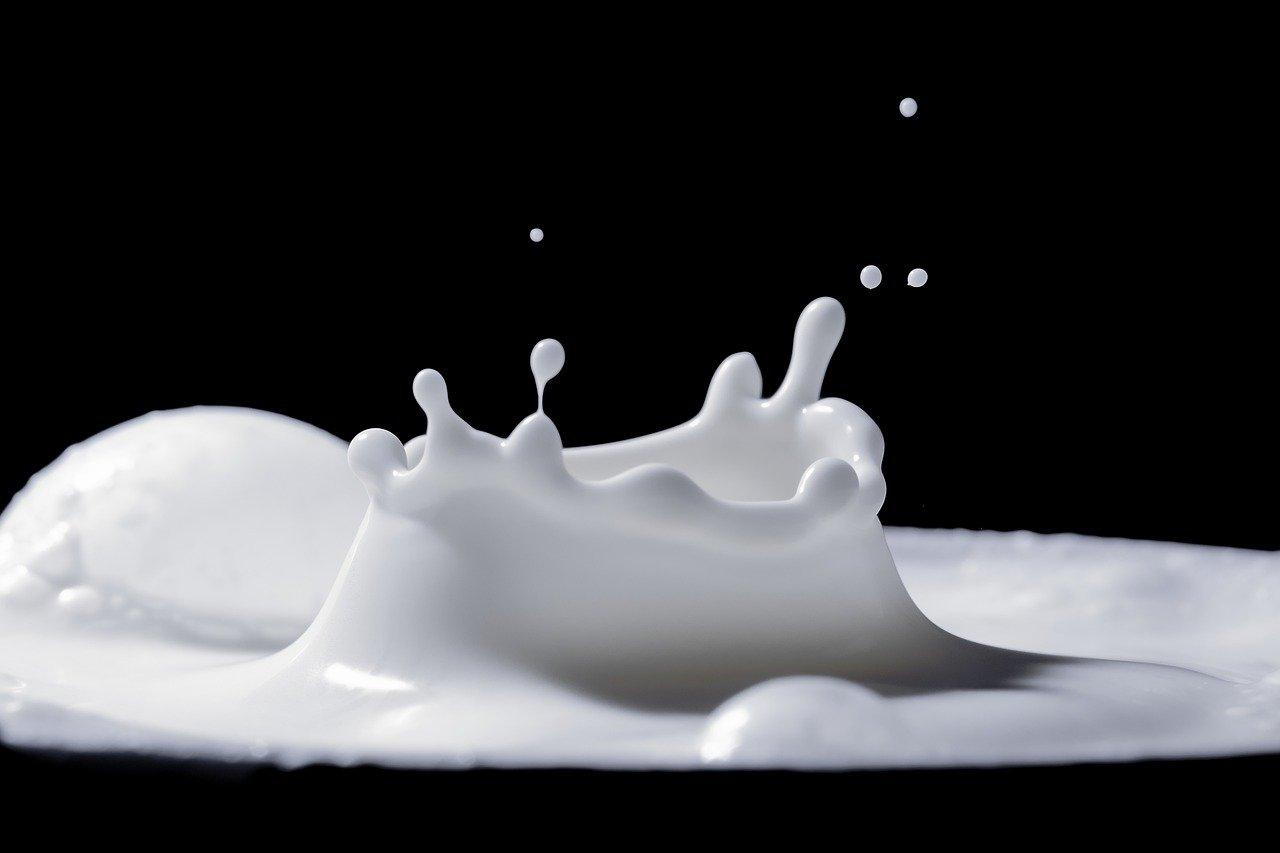 Итоги-2020. Молоко и молочные продукты