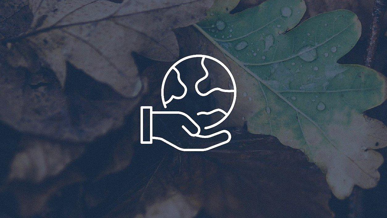 Граждане смогут узнавать о состоянии окружающей среды из открытых источников
