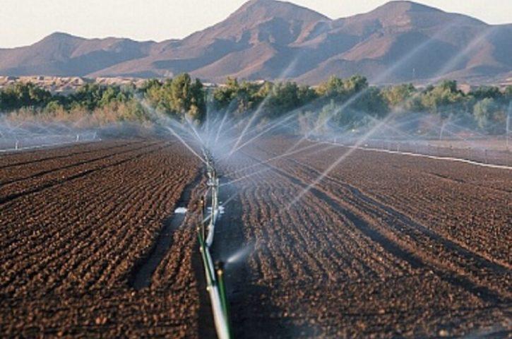 В России будет выстроена комплексная работа по борьбе с опустыниванием сельхозземель